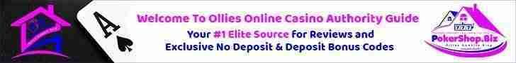 Online Poker Casino Betting Slots Bingo (BLOG) PokershopBiz 2